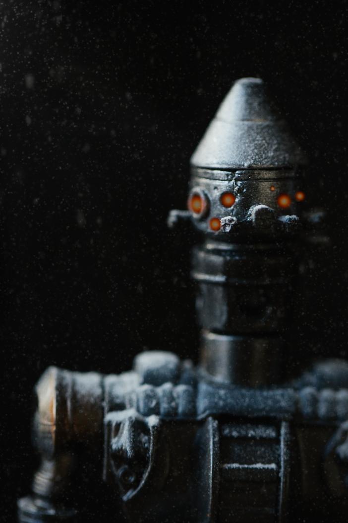 252A2195-Edit-Close-up