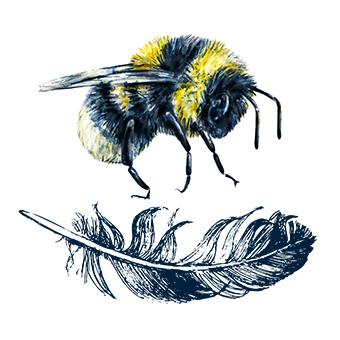 birdandbumblebee